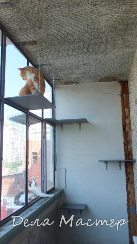 Сетка антикошка на балконе