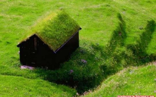 Чем покрывать крышу дом