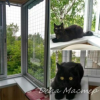 Сетка для кошек на балконе съемная