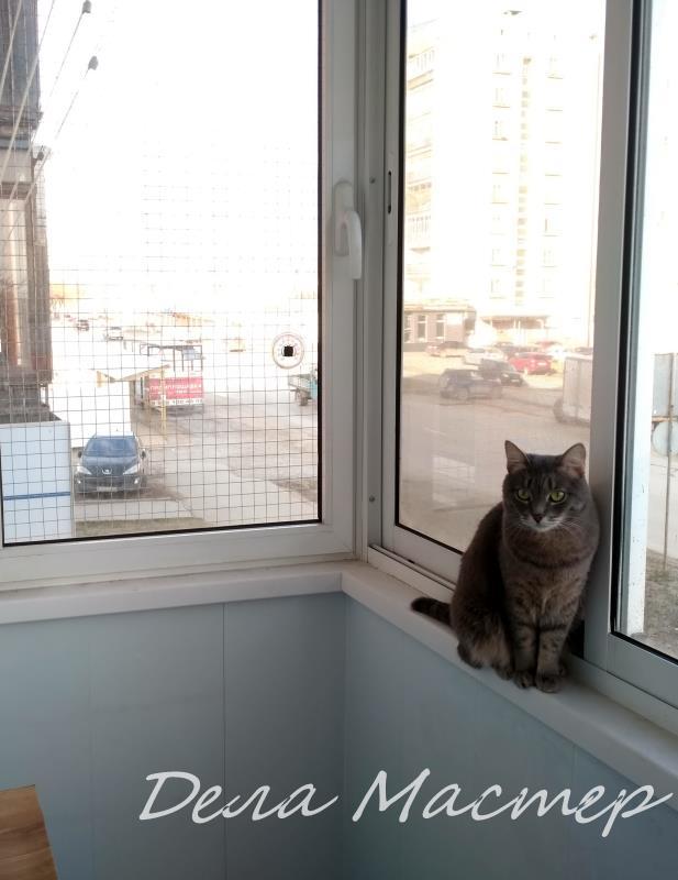 Сетки на окна с кошкой