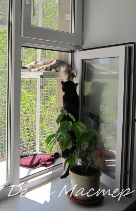 Вольер для кошки на окно