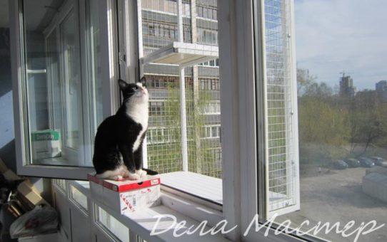 Выгул для кошек на балкон