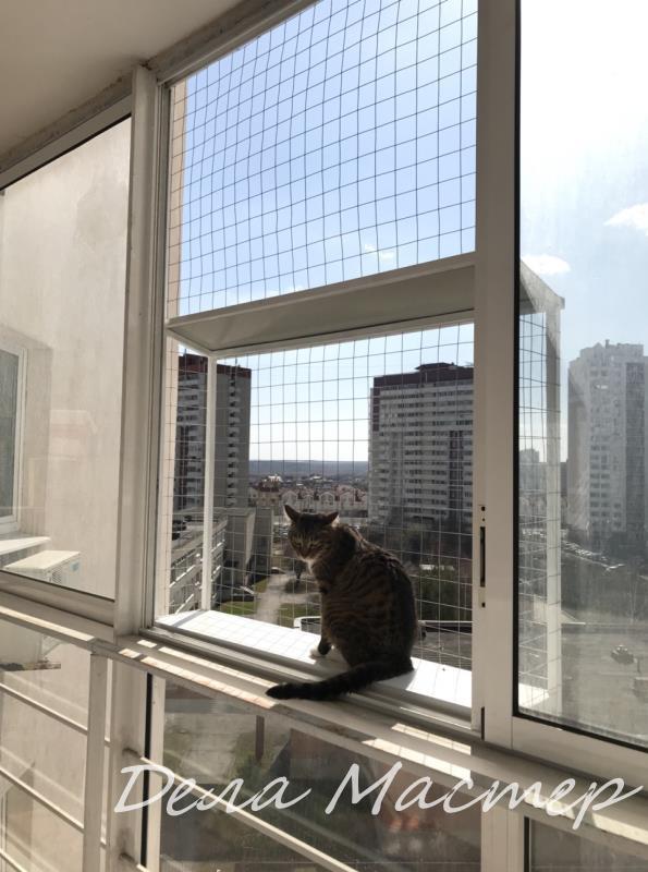 Выгул для кошки Екатеринбург